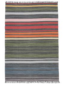 Rainbow Stripe - Grigio Tappeto 140X200 Moderno Tessuto A Mano Grigio Scuro/Verde Oliva (Cotone, India)