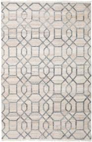 Tracy Tappeto 200X300 Moderno Tessuto A Mano Grigio Chiaro ( India)