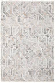 Tappeto Esterno Trinny - Marrone/Nature Tappeto 200X300 Moderno Tessuto A Mano Grigio Chiaro ( India)