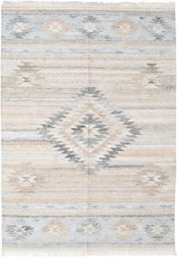 Tulum Tappeto 160X230 Moderno Tessuto A Mano Grigio Chiaro ( India)